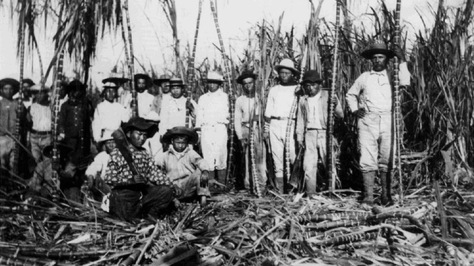 hawaiicaneworkers_slideshow